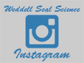 New Weddell Seal Science Instagram