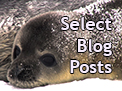 New Section of selected Antarctica Field Blog Posts